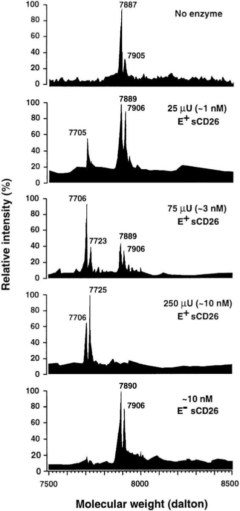 RANTES cleavage  products after digestion with  sCD26. RANTES was incubated overnight with the indicated amounts of E+ or sCD26  and samples were subjected to  ES-MS analysis. The peaks in the  spectrum at masses (m) of 7,905  to 7,906 and 7,887 to 7,890 are  tentatively identified as [M +  K+]+ of RANTES with (7,904  daltons) and without (7,886 daltons) a molecule of H2O, respectively; the labeled peaks at the  left of the spectrum correspond  to each of these molecular ions  minus a Ser-Pro dipeptide (184  daltons).