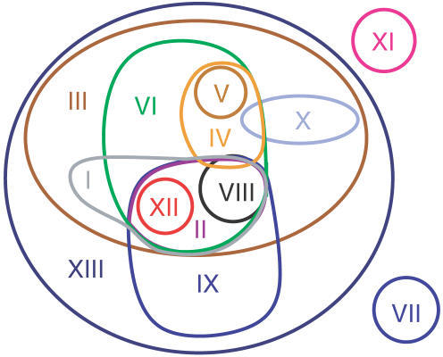 Consensus scope overlap for the 13 clusters obtained with the hierarchical clustering method.Two of the consensus scopes (VII, XI) are mutually disjoint, while others overlap (e.g., III and IX), and some consensus scopes are fully contained in others (e.g., VI in III).