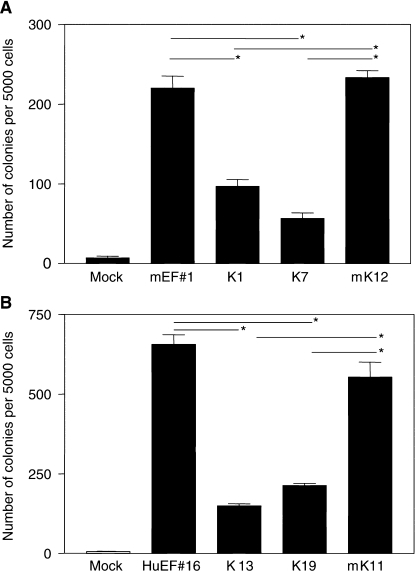 KRAB/FLI-1 inhibits colony formation in soft-agar assays. (A) The parental murine Ews/Fli-1-transformed NIH3T3 cells (mEF#1) and KRAB/FLI-1 (K1, K7) or mutant KRAB/FLI-1 (mK12) cotransfected subclones. (B) The parental human EWS/FLI-1-transformed NIH3T3 cells (HuEF#16) and KRAB/FLI-1 (K13, K19) or mutant KRAB/FLI-1 (mK11) cotransfected subclones. Data are representative of three separate experiments and values shown are the mean±s.e.m. of triplicate samples at day 12. Samples indicated (*) were significantly different (P<0.05).