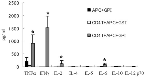 GPI-induced TNF-α and IFN-γ production from arthritic splenocytes in vitro. Spleens were removed from glucose-6-phosphate isomerase (GPI)-immunized DBA/1 mice (on day 8 after immunization), and then single-cell suspensions were prepared. MACS separated CD4+ T cells (1 × 106 cells/ml) were stimulated with 5 μg/ml GPI (or glutathione S-transferase [GST]) and antigen-presenting cells (APCs; 2 × 105 cells/ml, mitomycin treated) for 12 hours. The culture supernatants were collected and concentrations of tumor necrosis factor (TNF)-α, IFN-γ, IL-2, IL-4, IL-5, IL-6, IL-10, and IL-12p70 were measured by cytometric bead array. Data were averages of three independent experiments. Error bars represent ± standard error. *P < 0.05, by Mann-Whitney U-test.