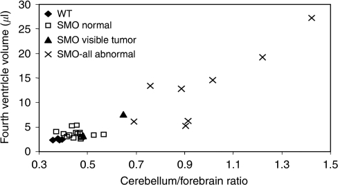 A plot between the cerebellum-to-forebrain length ratio and the volume of the fourth ventricle from WT and SMO mice with and without T2 MRI abnormality.