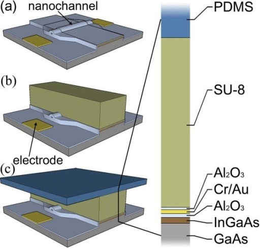 Schematic of the microfluidic setup. (a) A processed transistor structure, including the electrodes and the wrinkled nanochannel. (b) SU-8 microchannel walls defining the microfluidic channels on the chip structure. (c) Sealing of the microchannel system by using a flexible PDMS top layer.