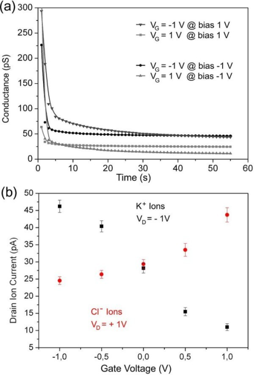 Electrical measurements. (a) Transistor conductance over time at different electrode configurations. Biases were applied at 0 s to the electrodes and the measurement started after 2 s. The fast decay of the polarization effects enables the measurement of the real current without additional effects after 55 s. (b) Ion current modulation by changing the gate bias while keeping VS = 0 V and setting VD = +1 V for detecting Cl- ions (red points) and VD = -1 V for detecting K+ ions (black points).