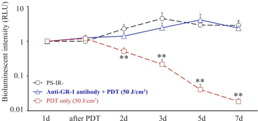 Effect of anti-GR-1 antibody.Comparison of time courses of the bioluminescent intensity in the PS-IR- group, the anti-GR-1 antibody + Th-PDT (50 J/cm2) group and the Th-PDT (50 J/cm2) group. n = 5 each. **P<0.01.