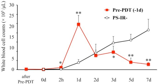 Time course of intrarticular leukocytes.Comparison of time courses of intraarticular leukocyte counts in the Pre-PDT (−1d) group and the PS-IR- group. n = 5 each. *P<0.05, **P<0.01.