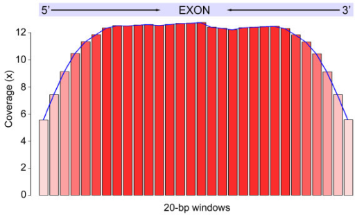 Coverage-exon distance distributions. Exons that ranged between 201–600 bp were used for generating the plot. Each target exon was split into 20-bp bins depicted by the red bar (X-axis). The average base coverage within each exon bin is shown on the Y-axis.