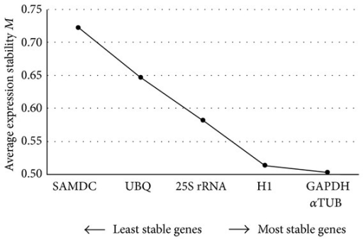 Average gene expression stability values (M) of six sugarcane potential reference genes (αTUB: alpha-tubulin; GAPDH: glyceraldehyde 3 phosphate dehydrogenase; H1: histone H1; SAMDC: S-adenosylmethionine decarboxylase; UBQ: ubiquitin; 25S rRNA: 25S ribosomal RNA) based on the GeNorm analysis [17].