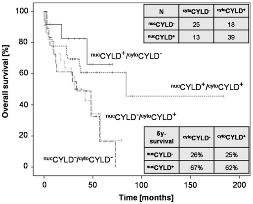 Survival of HCC patients after liver surgery according to subcellular CYLD expression.Kaplan-Meier analysis (N = 95) for overall survival (OS) of patients receiving liver resection, for the following subgroups: (nucCYLD+/cyt°CYLD−, nucCYLD+/cyt°CYLD+, nucCYLD−/cyt°CYLD+ and nucCYLD−/cyt°CYLD− (P = 0.06). Positive nuclear (nucCYLD+) and cytoplasmic (cyt°CYLD+) CYLD staining was defined as an immunohistochemical score (IHS) ≥3 for nucCYLD+ and ≥6 for cyt°CYLD+ (IHS ranging from 0 to 12, obtained by multiplication of the intensity and the quantity score).