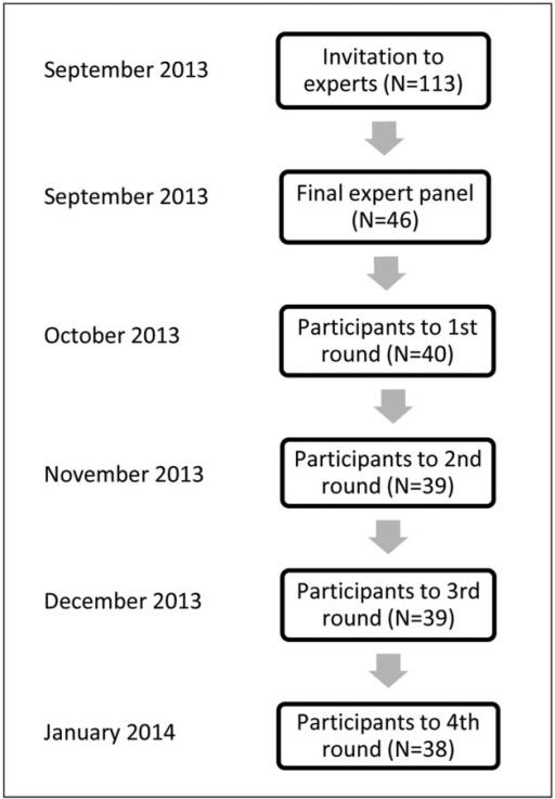 Flow chart of the participation of experts.