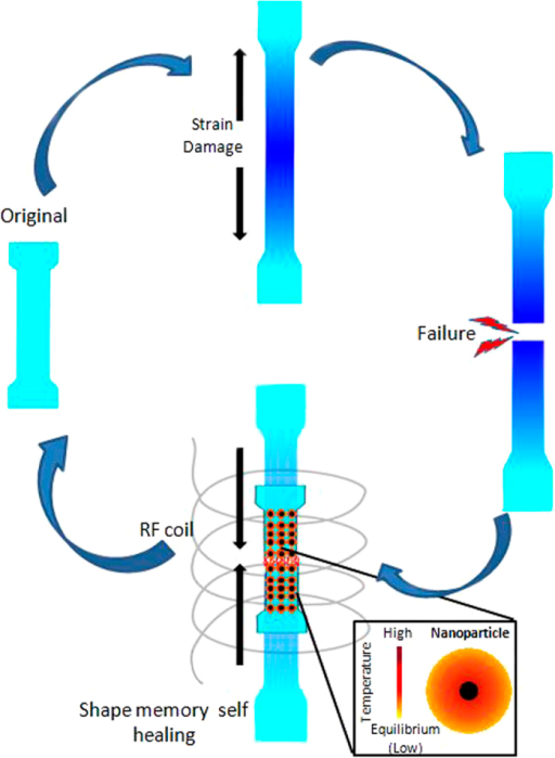 Schematic of damage sensing and self healing in Magpol.The sample displays damage sensing by a colour change on plastic deformation. This colour change becomes more pronounced with increasing strain. The sample is strained until failure. Subsequently, healing is carried out in an AMF. Embedded nanoparticles generate heat, resulting in recovery of the original shape and healing of the damaged region along with a return to the original colour.