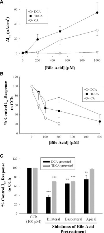 Structure–activity relationships for bile acids in regulating epithelial secretory function. (A) Monolayers of T84 cells were exposed bilaterally to increasing concentrations of DCA (n= 5), TDCA (n= 5), or cholic acid (n= 3) and maximal Isc responses were measured. (B) T84 cell monolayers were exposed to increasing concentrations of bilateral DCA (n= 5), TDCA (n= 4), and cholic acid (n= 5) for 24 hrs after which secretory responses to CCh (100 μM) were measured. (C) Monolayers of T84 cells were exposed to DCA (50 μM; n= 4) or TDCA (200 μM; n= 4) on the apical, basolateral, or both sides for 24 hrs after which cells were voltage‐clamped and subsequent secretory responses to CCh (100 μM) were measured. **P < 0.01; ***P < 0.001.
