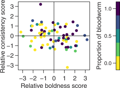 The effect of relative personality trait scores on the proportion of food eaten by each fish in two-fish trials.The proportion of food is represented on a colour scale. Relatively bolder and more consistent fish ate more food (i.e. there are darker points in the top right quarter compared to the bottom left quarter).