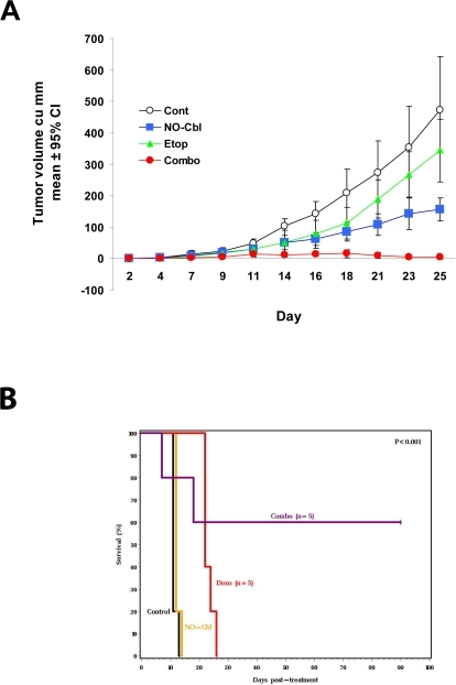 Effects of NO-Cbl and chemotherapeutic agents in vivo.A, NCR male athymic nude (nu/nu) mice (n = 10 per group) were injected subcutaneously (s.c.) with 2×106 NIH-OVCAR-3 cells. Daily drug treatments of control (PBS), NO-Cbl (150 mg/kg, s.c.), etoposide (2 mg/kg, s.c.), and the combination began on day 2 following inoculation. Tumor volume was measured every other day. Points represent the mean tumor volume±95% CI. B, Kaplan-Meir survival curve. DBA/2 male mice (n = 5) were inoculated intraperitoneally (i.p.) with 105 P388 murine leukemia cells. NO-Cbl was given twice daily (165 mg/kg, i.p.) and doxorubicin (4 mg/kg, i.p.) was administered once weekly, starting on day 2. Treatment in the combination group ceased on day 40 and the animals continued to be monitored for ninety days. Significance comparing the survival of groups was calculated using the logrank test.