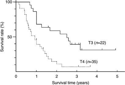 Survival curves of 22 patients with T3 disease and 35 patients with T4 disease.