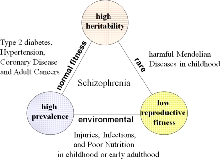 epidemiology triangle and diabetes Cardiovascular disease, stroke, diabetes and hypertension (ignatavicius and   elements of the epidemiologic triangle there can be increased risk of the.