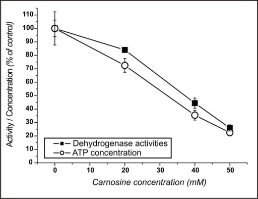 Activity of dehydrogenases and concentration of ATP in NIH3T3-HER2/neu cells cultivated at different concentrations of carnosine. Cells were incubated for 70 hours in media with carnosine. After incubation ATP concentration as well as dehydrogenase activities were determined and compared to cells not treated with carnosine.
