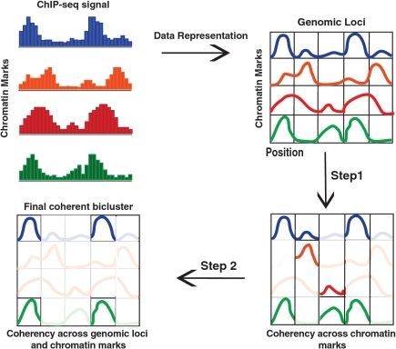Overview of the CoSBI algorithm. In Step 1, for each genomic locus, we identify sets of maximal coherent chromatin marks. In Step 2, using the results of Step 1, we identify sets of biclusters that are coherent in two dimensions.