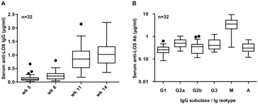 Anti-LOS IgG antibody responses induced by MAP1-MPL immunization.32 BALB/c mice were immunized intraperitoneally (ip) with MAP1 emulsified with MPL and boosted four times at 3-week intervals. A. Total anti-LOS IgG antibody levels at wk 5, 8,11 and 14 following immunization. B. Post-immunization (wk 14) anti-LOS IgG subclass, IgM and IgA anti-LOS antibody levels. Results are represented as box plots; the spots represent outliers beyond the 1.5 IQR (intraquartile range). IgG subclass responses indicate a TH1-biased response (see text, [22]).