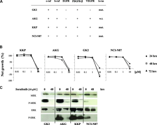 (A) Western blot analysis of baseline expression of sorafenib targets (c-raf, b-raf, EGFR, PDGFR-β, VEGFR) in gastric cancer lines, and κ-ras mutation analysis (mut., mutated; w.t., wild-type). (B) Cytotoxic activity of sorafenib after 24, 48 and 72-hr exposure in gastric cancer cell lines. (C) Effect of 10 μM sorafenib concentration on MAP kinase pathway after 48-hr exposure.