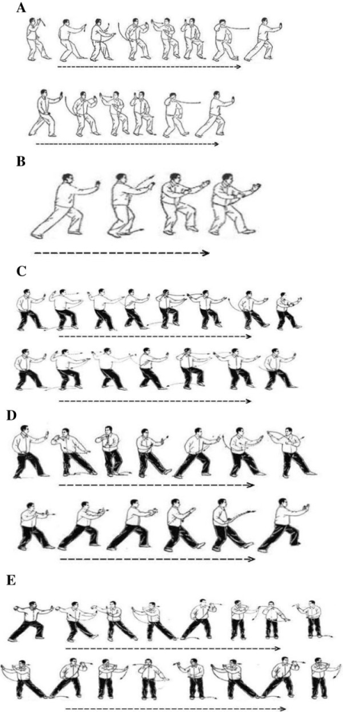Illustration of five tai chi movements. (A) Brush Knee and Twist Steps; (B) Playing the Lute; (C) Step Back to Repulse Monkey; (D) Grasp Sparrow's Tail; (E) Wave Hands like Clouds.