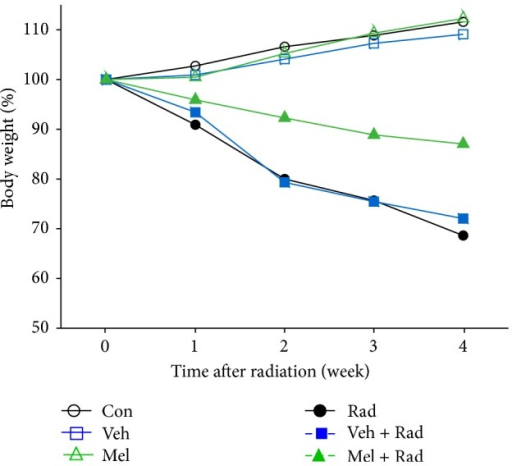 Percent change in body weight of rats. Con: Control group, Veh: Vehicle only group, Mel: Melatonin only group, Rad: Radiation only group, Veh + Rad: Treated with vehicle and exposed to 10 Gy radiation, and Mel + Rad: Treated with 100 mg/kg melatonin before exposure to 10 Gy radiation.