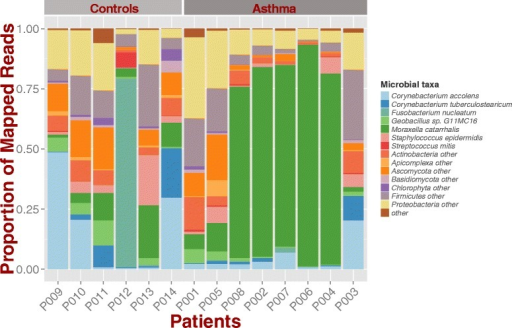Microbial composition of asthma and control samples. Stacked bar chart shows different composition among groups with Moraxella catarrhalis dominating 5 out of 8 asthma samples. Since samples are RNA, the proportion of mapped reads represents the confounded variable of microbe presence and microbial gene expression