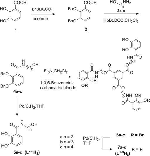 Synthesis of hexadentate enterobactin analogues 7a–c (L1–3H6) and 5a–c (L7–9H2).