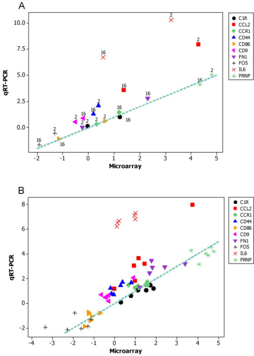 Scatterplots comparing the differential expression measured by qRT-PCR and microarray analysis for 10 investigated genes at 2 time points after activation. A, average log(differential expression). The numbers indicate the time post activation. B, log(differential expression) of individual animals at 16 hours post activation. The 10 investigated genes were C1R (black circle), CCL2 (red square), CCR1 (green diamond), CD44 (blue triangle), CD86 (orange triangle), CD9 (pink triangle), FN1 (purple triangle), FOS (black cross), IL6 (red cross) and PRNP (green star). The dotted lines denote the lines of equality (y = x).