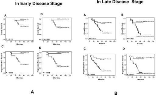 Results of survival rate with immunohistochemical variables in different disease stages (n = 39). A. In the early disease stage, the number of CD8+ cells (A and C) and the ratio of CD8+TIL to Foxp3+ TIL (B and D) are significantly associated with PFS (P < 0.05). B. In the late disease stage, the number of Foxp3+ cells (A and C) and Foxp3+ together with GrB+ cells (B and D) are significantly associated with OS (P < 0.01) and PFS (P < 0.01).