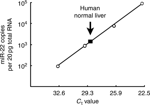 Endogenous miR-22 expression level in human normal liver. Data are shown as miRNA copies per 20 pg total RNA (equivalent of approximately one cell).