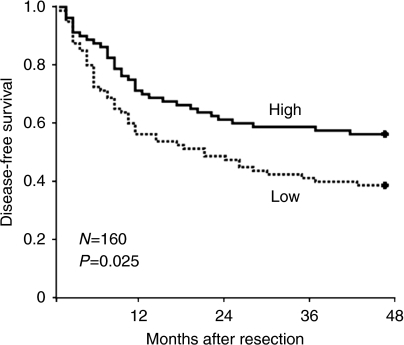 Kaplan–Meier disease-free survival analysis for HCC patients according to miR-22 level. The median value of miR-22 level was chosen as the cutoff point for separating miR-22 low-expression tumours (n=80) from miR-22 high-expression cases (n=80). P-value is shown with the use of log-rank test in SPSS 17.0.