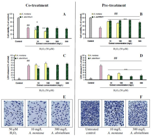 Viability of NCTC cells after co-treatment (A, C) and pre-treatment (B, D) with plant extracts at various concentrations, analyzed by Neutral red (A, B) and LDH (C, D) assays. Results are represented as mean ± SD (n = 6). ##p < 0.01 compared with untreated control (dotted); *p < 0.05 and **p < 0.01 compared with H2O2-treated group (striped). Micrographs taken at 24 h after H2O2-treatment showed the morphology of cells after co-treatment (E) and pre-treatment (F) with 10 mg/L A. montana extract and 300 mg/L A. absinthium extract. Scale bar = 10 μm.