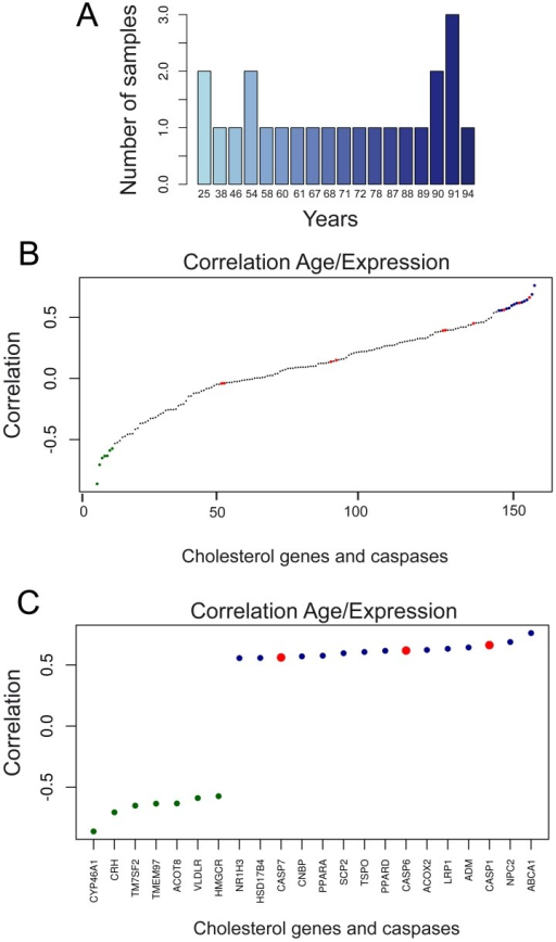 Analysis of cholesterol and caspase genes expression with aging in anterior prefrontal cortex.A. Bar plot displaying the age frequencies of the samples used in the analysis. B. Dot plot of ranked correlations of the 129 genes involved in cholesterol homeostasis/steroidogenesis and caspases respect to age. C. Dot plot of ranked correlations of genes involved in cholesterol homeostasis/steroidogenesis and caspases that scored significant expression correlation with respect to age. We applied the Spearman method (Benjamini and Hockberg correction). P<0.05.