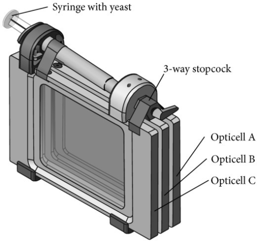 The Opticell Processing Module (OPM) designed for propagation of each deletion collection for ~21 generations of growth. The OPM comprises three commercially available optically clear chambers (Opticells, Nunc) that are joined by a manifold and scaffold that can be autoclaved and assembled rapidly. The manifold contains a multiway valve unit which mates to each Opticell or to an the off position using O-ring seals. The opposite side of the valve contains a Luer fitting into which a standard 3cc syringe is attached. To perform a growth assay in the OPM, each of the three chambers is filled with 7 mL of sterile growth media. Deletion pools are loaded into the inoculation syringe and then injected into Chamber A of the OPM, precooled to 4°C. Growth is initiated by warming the unit to 30°C. After 16–24 h, 0.5 mL is removed from Chamber A and injected and mixed into Chamber B using the same syringe. This is repeated to continue multigenerational growth in Chamber C.