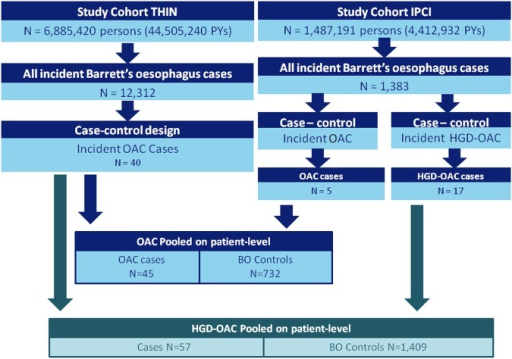 Flowchart of Barrett's oesophagus and oesophageal adenocarcinoma cases in the UK and the Netherlands. BO, Barrett's oesophagus; OAC, oesophageal adenocarcinoma; HGD, high-grade dysplasia; THIN, The Health Improvement Network; IPCI, Integrated Primary Care Information; PYs, person years.