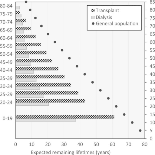 Expected remaining lifetimes of prevalent dialysis and renal transplant patients in 2010 and 2011 compared with the 2005 general population statistics.