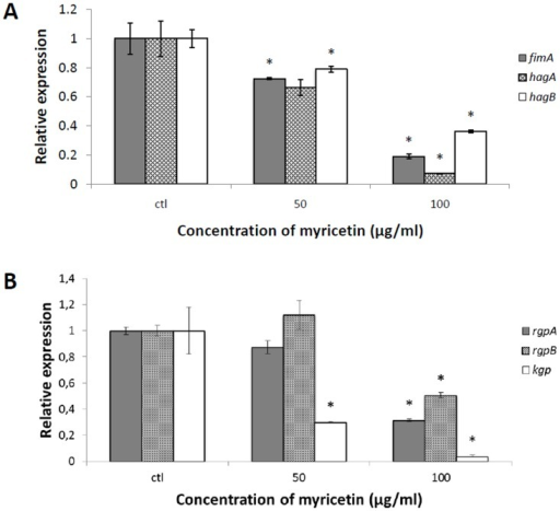 Effect of myricetin on mRNA expression of fimA, hagA, and hagB (Panel A), and rgpA, rgpB, and kgp (Panel B) genes in P. gingivalis ATCC 33277.Bacteria were incubated (8 h; anaerobic condition) in the presence of myricetin (50 and 100 μg/ml). Data are expressed as means ± standard deviations. The expression was normalized to 16S rRNA. *, significantly different (P < 0.01) compared to untreated control.
