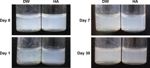 Digital images of PTX dispersed in distilled water (DW) and in aqueous HA solution.Abbreviations: PTX, paclitaxel; HA, hyaluronic acid.