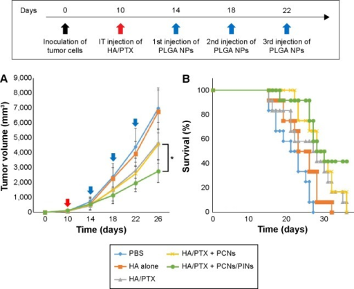 Expression of BMDC maturation markers.Notes: BMDCs (2×106 cells) were unmanipulated (no treatment) or transfected with 500 nM PINs for 24 hours. Then, the DCs were stimulated with 5 µg/mL PCNs for 24 hours. The DC phenotype was assessed based on CD40, CD80, and CD86 expression via flow cytometry.Abbreviations: BMDC, bone marrow-derived dendritic cell; NS, not significant.