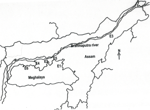 Map of North- Eastern India showing the places of collection of the eri silkworm, S.c. ricini populations. E1–E6 was the six populations as given in Table 1 (map not to scale).