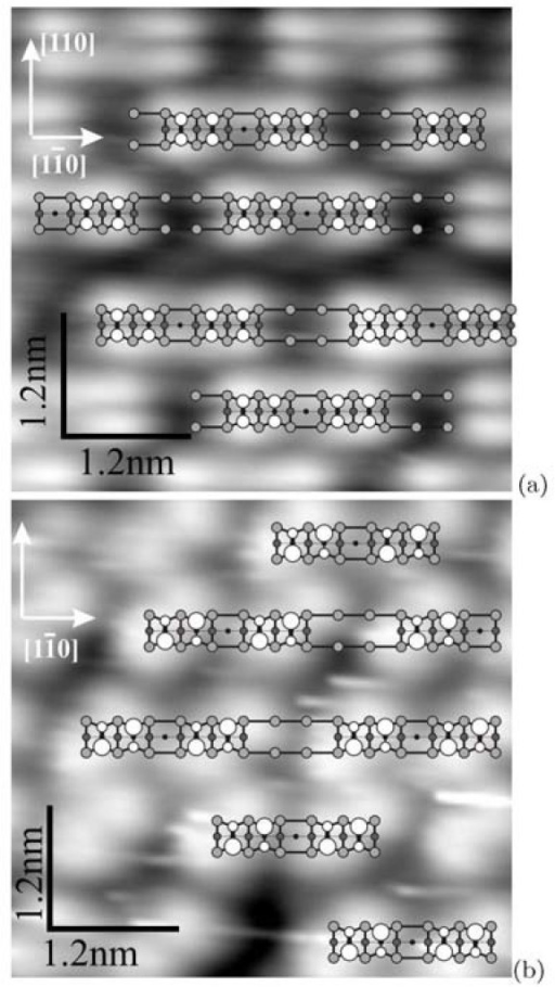 STM images of the Si(001)-c(8 × n) surface: (a) empty states (+1.7 V, 150 pA) and (b) filled states (-2.2 V, 120 pA). Corresponding schematic drawings of the surface structure are superimposed on both pictures. The lighter circle the higher the corresponding atom is situated in the surface structure. The dimer buckling is observed in the filled state image (b), which is reflected in the drawing by larger open circles representing higher atoms of the tilted Si dimers of the uppermost layer of the structure.