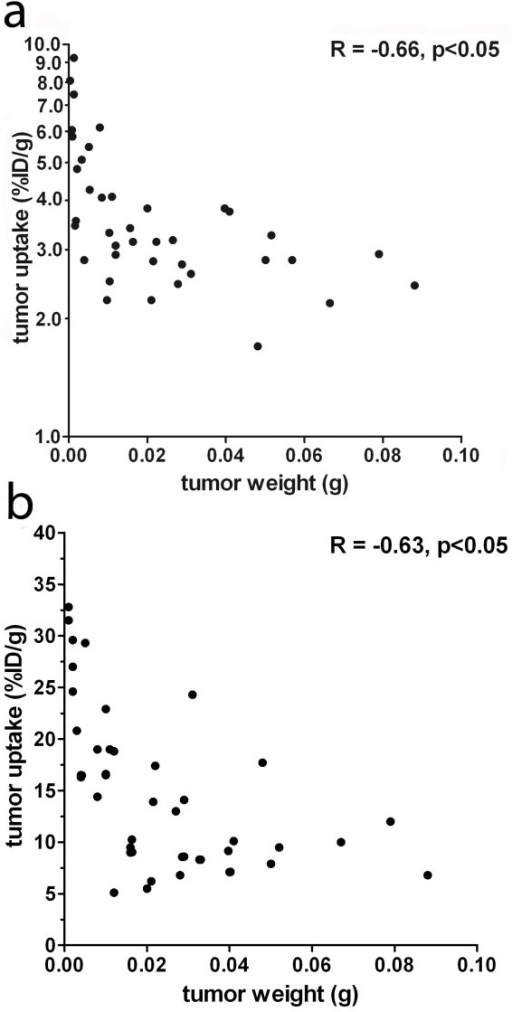Correlation between tumor uptake of 125I-TF2 (A) and 68Ga-IMP288 (B) and tumor size. (Spearman's rho = -0.66, p < 0.05 and Spearman's rho = -0.63, p < 0.05, respectively.)