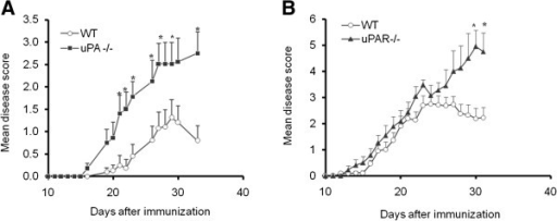 Experimental autoimmune encephalomyelitis (EAE) is aggravated in mice deficient for the urokinase plasminogen activator (uPA−/−), or the urokinase plasminogen activator receptor (uPAR−/−). (A) EAE clinical severity in uPA−/− mice and control wild-type (WT) mice. (B) EAE clinical severity in uPAR−/− mice and control WT mice. (A,B) Results are expressed as the mean clinical score ± standard error (SE) of three separate experiments (*P<0.05).