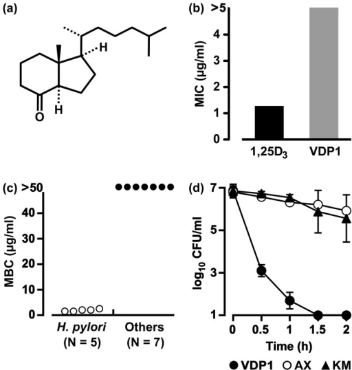 Anti-H. pylori activity of synthetic VDP1.(a) Chemical structure of VDP1. (b) The minimum inhibitory concentrations (MICs) of VDP1 and 1α,25-dihydroxyvitamin D3 (1,25D3) for the FC-retaining H. pylori strain NCTC 11638. (c) Eight bacterial species (107 CFU/ml), including five strains of H. pylori, were incubated for 24 h in a broth (1.5 ml) containing various concentrations of VDP1 in addition to 30 μM FC. After the incubation, the CFUs were counted to determine the minimum bactericidal concentrations (MBCs) that completely eradicate the 106 CFU of bacteria. Seven bacterial species were used in the experiment: S. aureus, E. coli, Salmonella, K. pneumoniae, P. mirabilis, S. marcescens and P. aeruginosa. (d) The FC-retaining H. pylori strain NCTC 11638 was incubated for 0.5 to 2 h in the presence of a 2 μg/ml concentration of VDP1, amoxicillin (AX) or kanamycin (KM) in a broth (1.5 ml) containing 30 μM FC, and the CFUs were counted. The mean CFU ± SD per ml was calculated from three independent experiments.