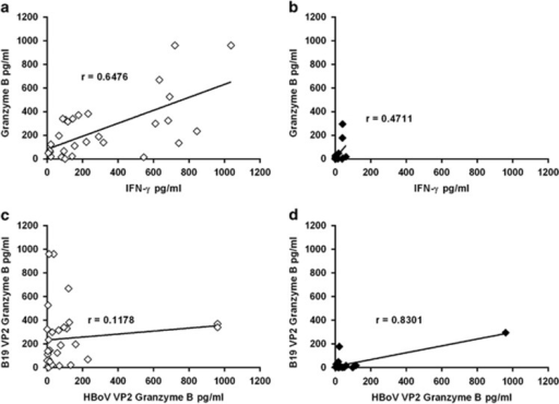 Correlation analysis. (a, b) Correlation between B19-specific IFN-γ and GrB responses among B19-seropositive (a) and -seronegative (b) individuals. (c, d) HBoV1 versus B19-specific GrB responses among the B19-seropositive (c) and -seronegative (d) subjects. Antigen concentrations were 1.5 μg ml−1. Spearman's correlation test was used.