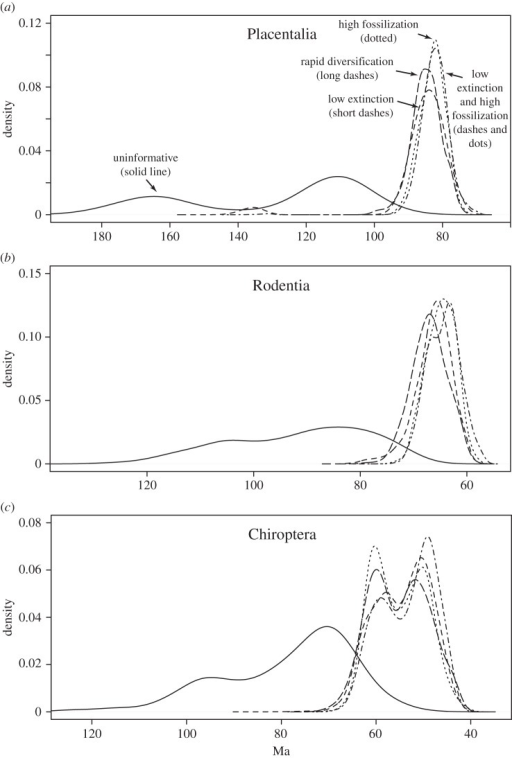 The influence of diversification and fossil sampling parameter priors. (a) Divergence time estimates (posterior densities) for crown Placentalia under different priors on diversification and fossil sampling parameters. (b) Ditto for crown Rodentia. (c) Ditto for crown Chiroptera. Ideally, with a large tree and a rich fossil sample, there will be enough information to infer diversification and fossil sampling parameters under an uninformative prior, but the signal in the eutherian data is not strong enough to resist DRA under such conditions. Instead, an uninformative prior results in a poorly defined, bimodal deep-root scenario in the posterior (solid line). It is sufficient to introduce a moderate extra penalty for unobserved ghost lineages to shift the posterior to a well-defined solution with a minimal gap between rocks and clocks. Such penalties may involve assumptions of low extinction rates, high fossil sampling probabilities, high net diversification or any combination of these (various dashed lines); the result is similar under all these scenarios. Bimodal distributions correspond to cases where there are alternative likely placements for key fossils.
