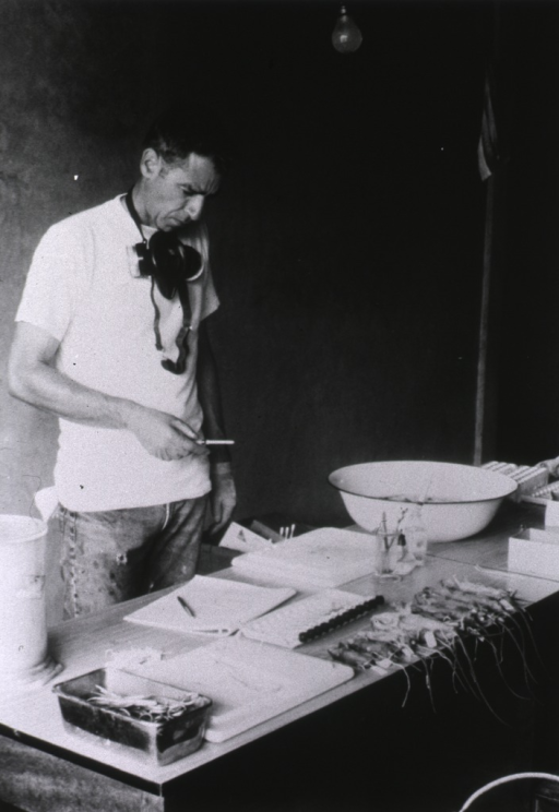 <p>A man wearing a t-shirt stands in front of a lab table, holding an instrument and looking down at a notebook. In front of the notebook is a row of dead rodents, each on its back, with the tails dangling over the edge of the table.</p>