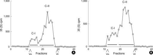 Sepharose CL-4B chromatography of cell layer proteoglycans. Equal amounts (cpm) of 35S-labeled proteoglycans purified on ion exchange chromatography (peaks B in Fig. 2) were subjected to Sepharose CL-4B chromatography using 4 M guanidine-HCI buffer containing protease inhibitors. (A) cell layer proteoglycans from cells incubated with 30 mM glucose. Peaks C-I and C-II were pooled as indicated by bars for further analysis.