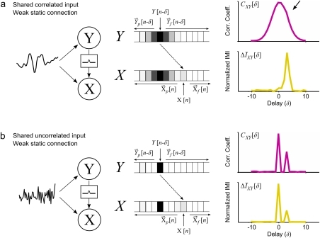 Incremental mutual information unmasks weak connections open i incremental mutual information unmasks weak connectionsa a schematic diagram showing two neurons x ccuart Choice Image