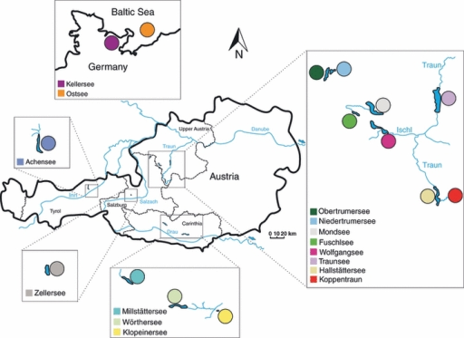 Sampled populations of Coregonus (primarily in Austria). Sample sites are colour coded for subsequent cross-referencing.